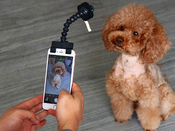 Adjustable Pet Selfie Smartphone Attachment: $12.99