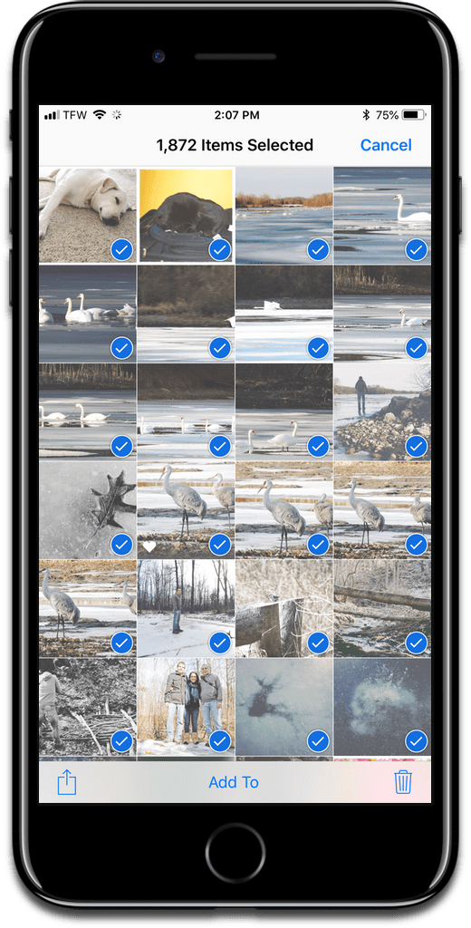 Delete all iOS photos by using the Select button.