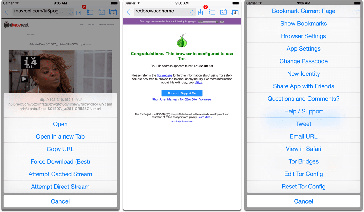 Screenshots of Red Onion in our list of iOS browsers.