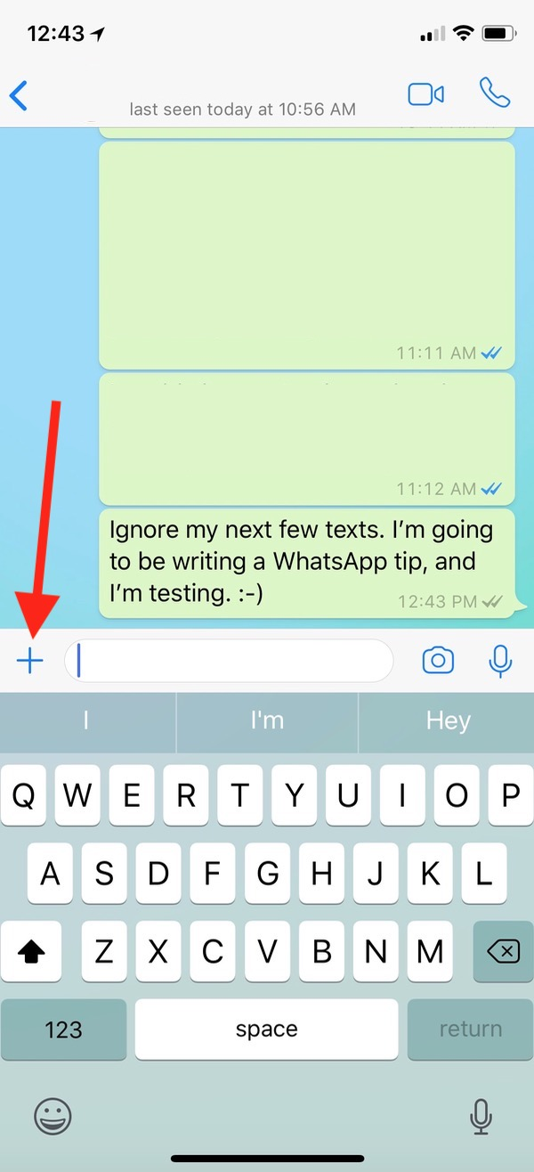 WhatsApp Plus Button reveals location sharing options
