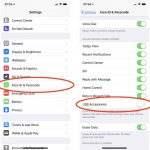 iOS 11.4.1 and iOS 12 USB Accessories setting for USB Restricted Mode