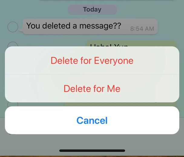 "WhatsApp ""Delete for Everyone"" Option for messages in a conversation"