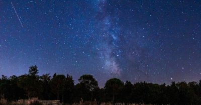 Milky Way and trees.