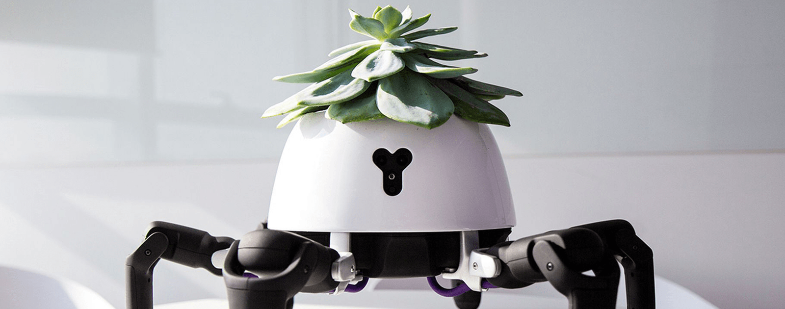 This Robot Gardener Chases After Sunlight