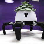 Check out this Robotic Pot that Can Move towards Light or Shade