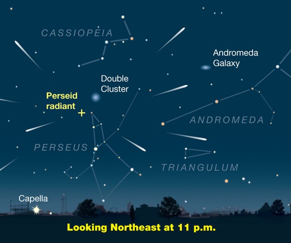 The Perseids apparent origination