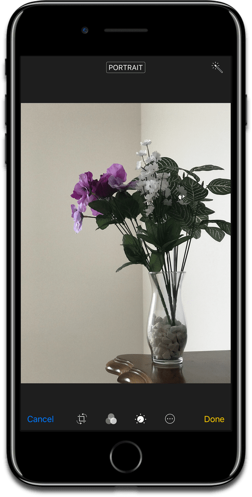 Remove portrait mode in iOS photos as shown here