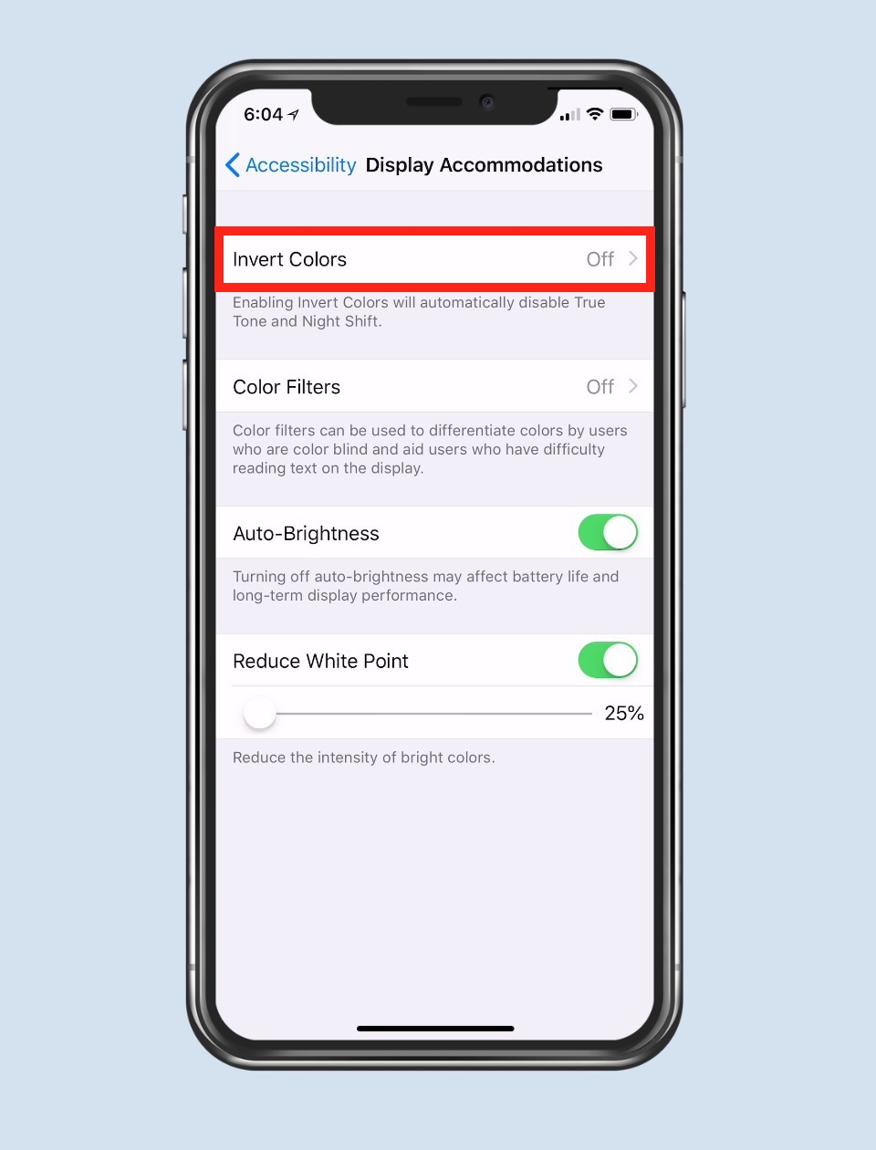 """""""Display Accommodations"""" Settings on iPhone"""