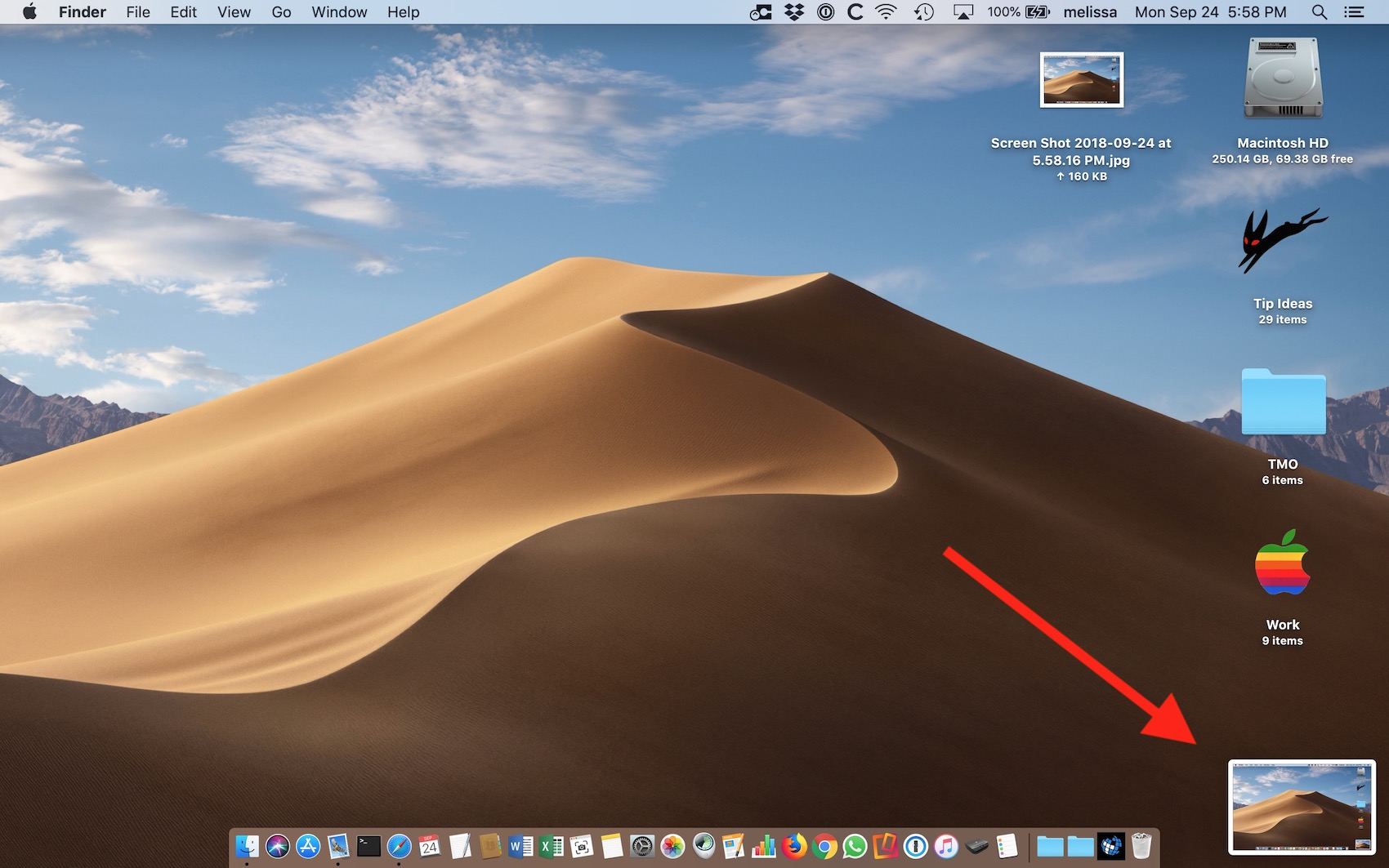 Thumbnail of Screenshot in macOS Mojave