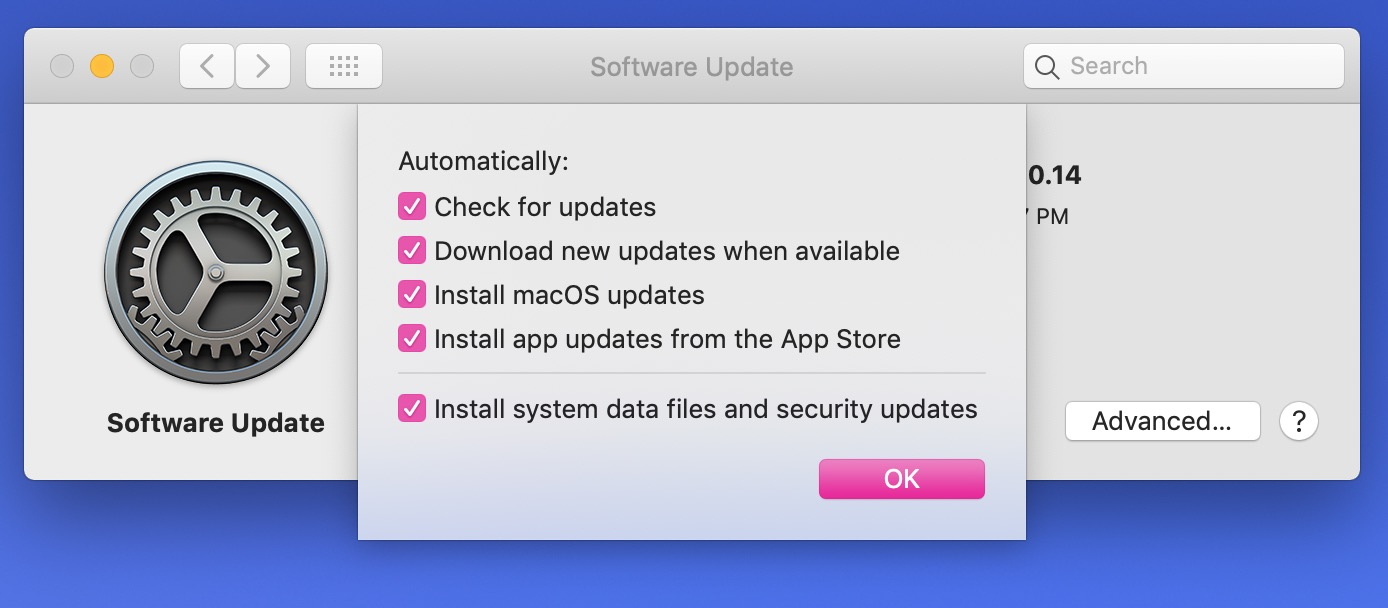 Update-Specific Checkboxes in macOS Mojave