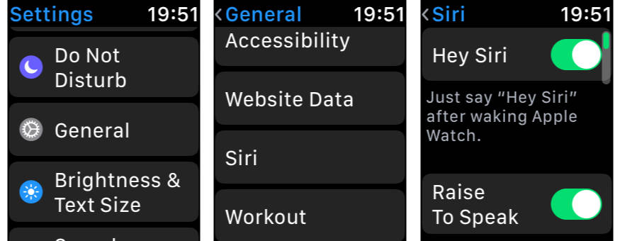 Apple Watch Raise to Speak settings in watchOS 5