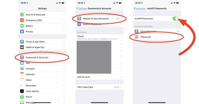 iOS 12 AutoFill Passwords settings on iPhone