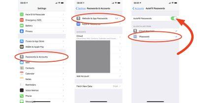 iOS 12 AutoFill Passwords settings on iPhone