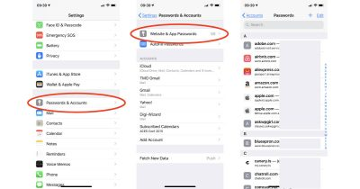 Saved password list in iOS 12 on iPhone