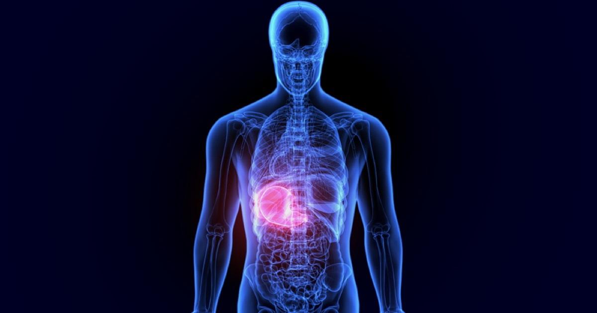 Human body - health monitoring