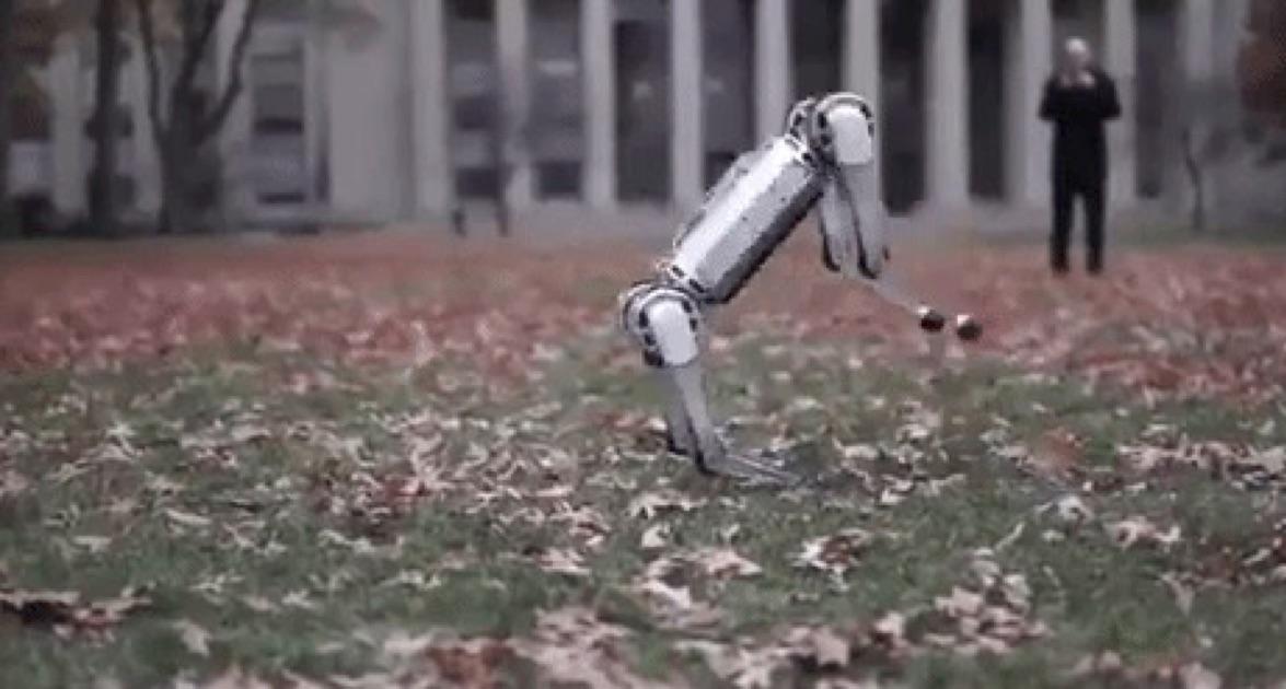 You'll do Backflips When You See This Robot do Backflips