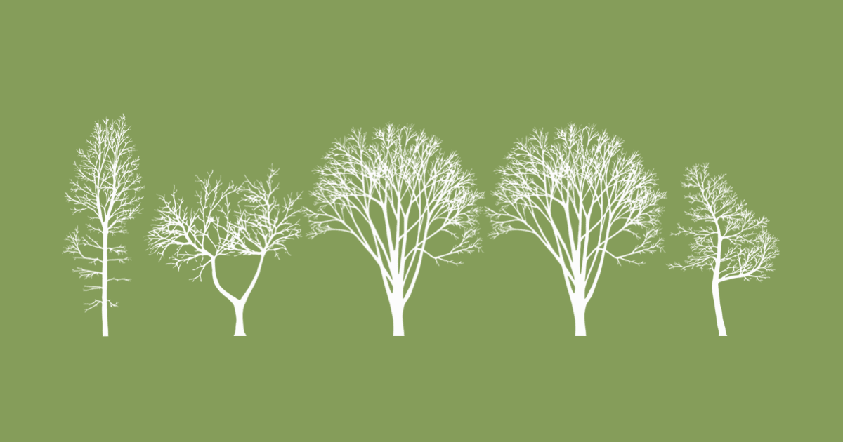 Can You Speak Tree Language? New York City Does