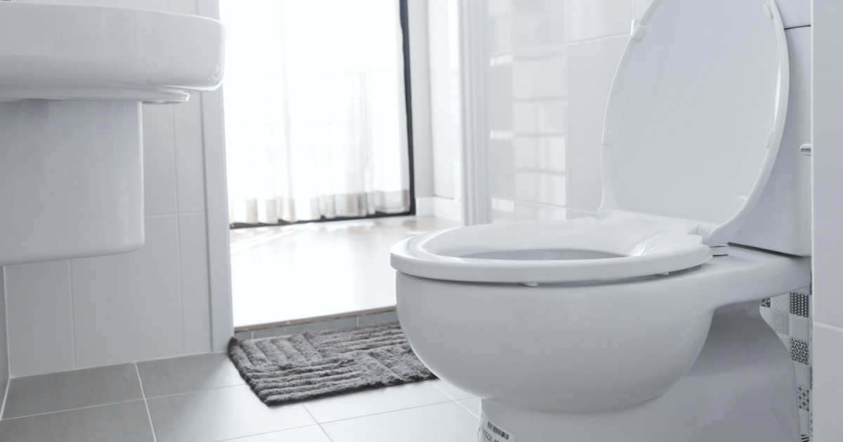 Want to Help Train AI? Send This Company Pictures of Your Poop