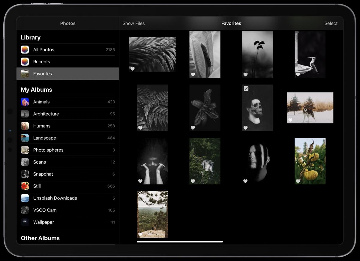 Hurry, Pixelmator Photo on iPadOS is Free Right Now