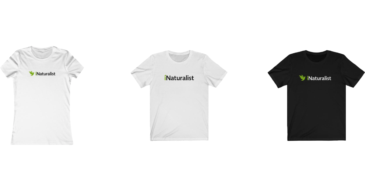 2019 holiday gift guide inaturalist shirts