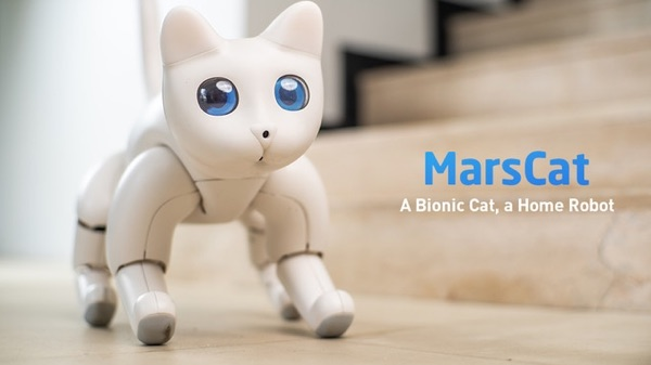 MarsCat robot.