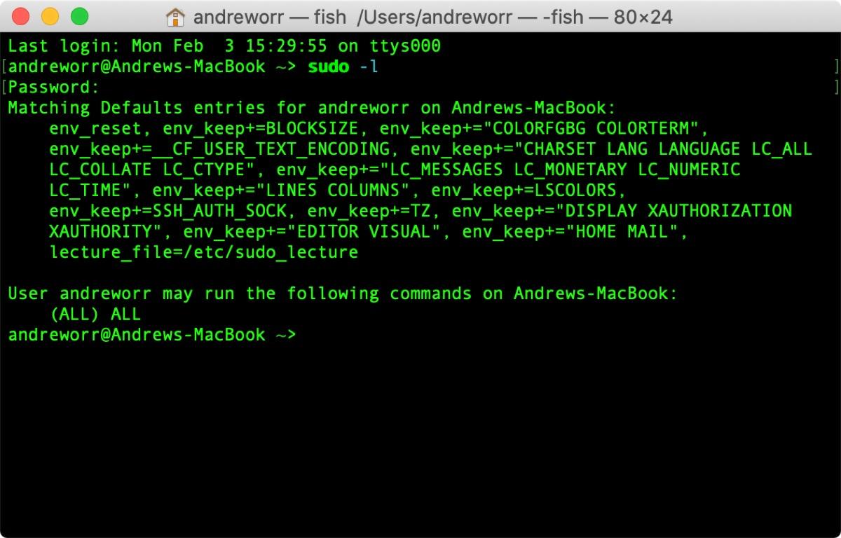 Screenshot of sudo command in macOS terminal