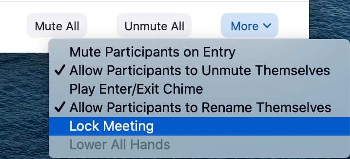 Zoom host options