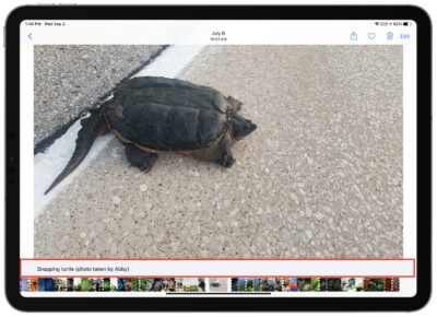 Add captions to photos in iOS 14