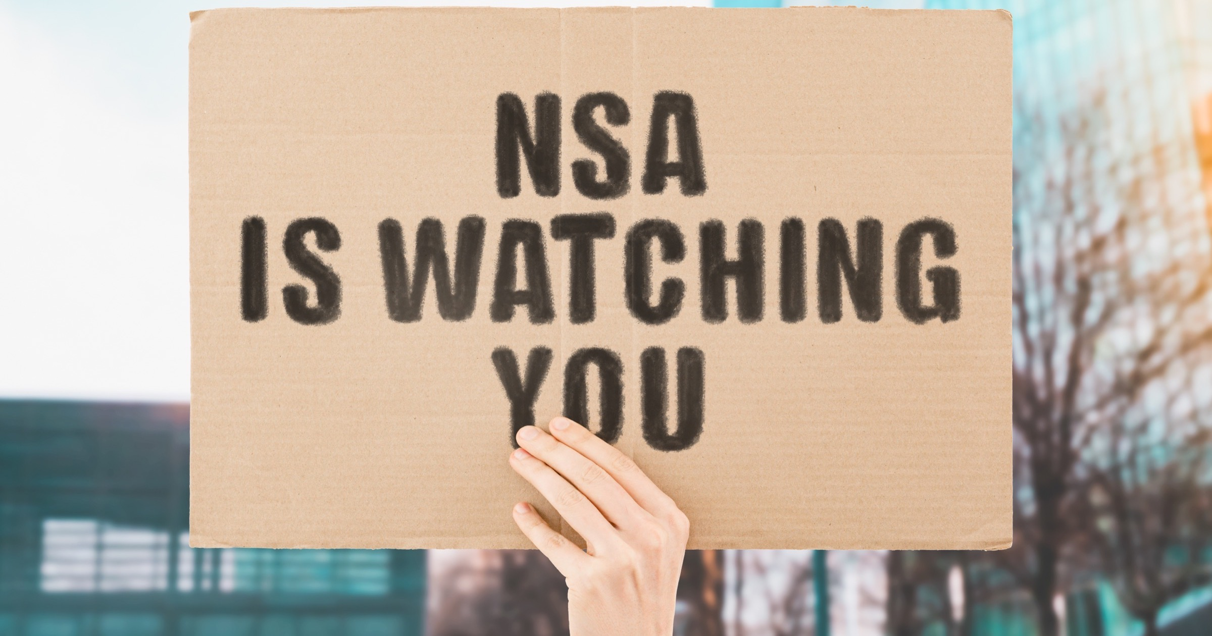 """Person holding a sign that says """"NSA is watching you."""""""