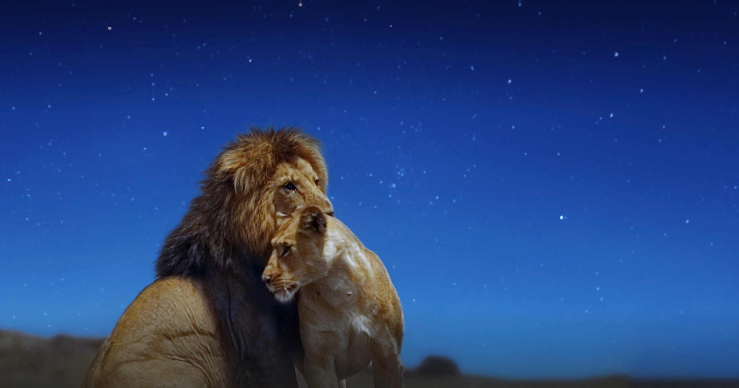 Two lions in earth at night in color