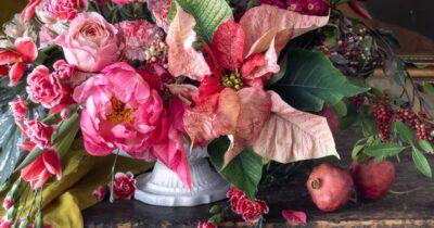 Nathan Underwood flower photo