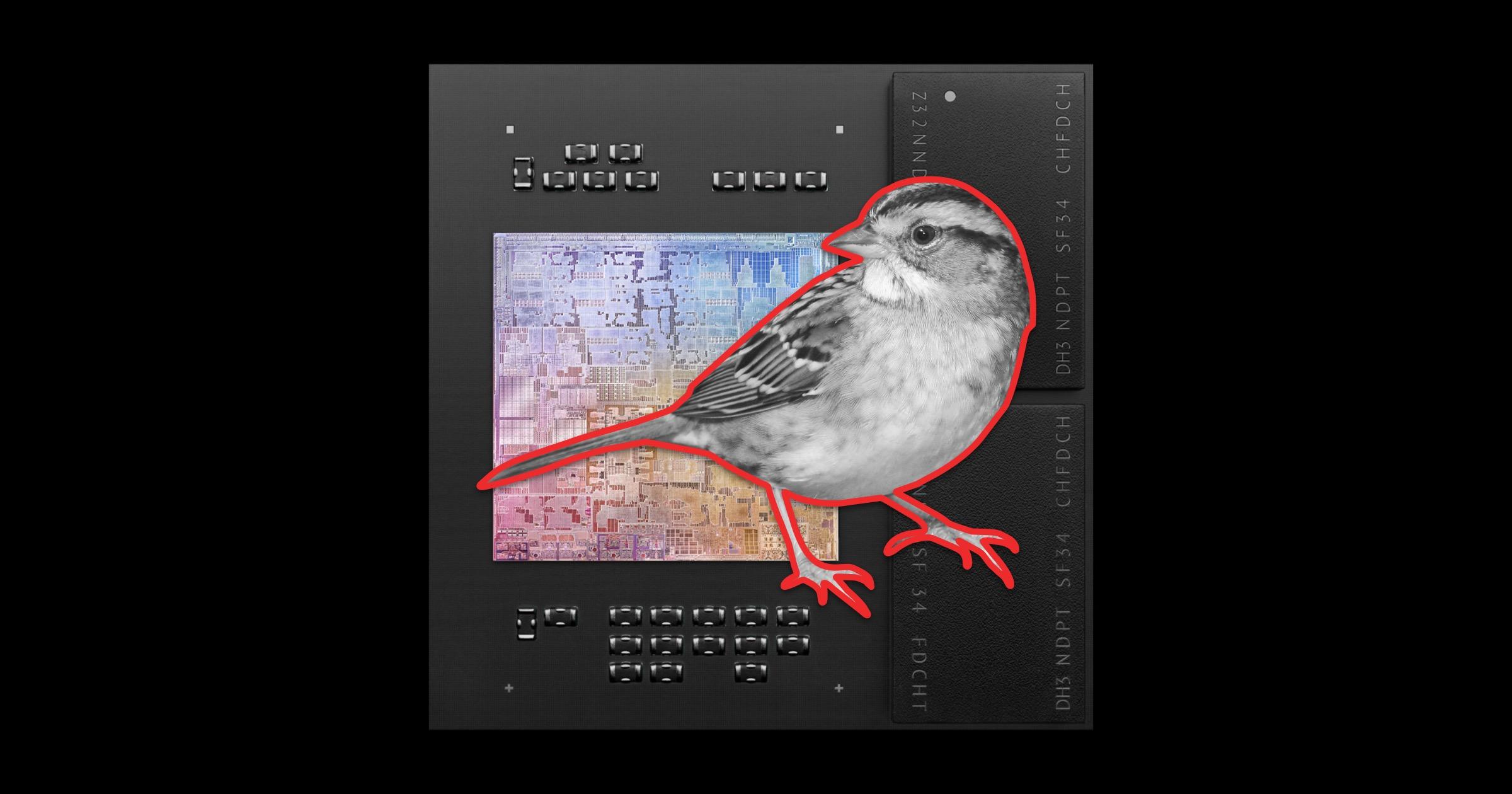 Silver sparrow malware