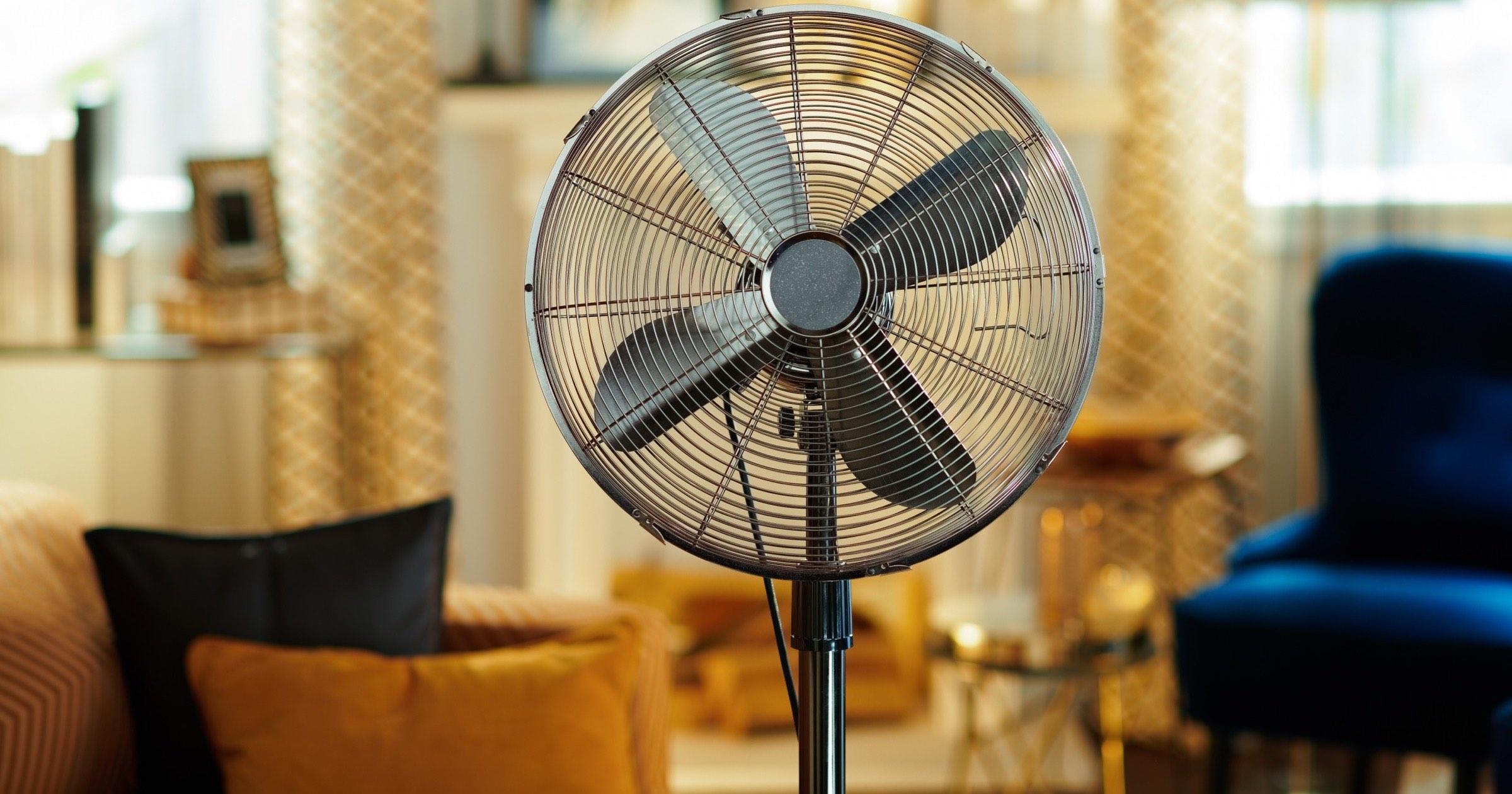 Standing electric fan