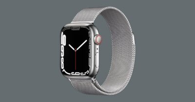 Apple Watch series 7 stainless steel with milanese band