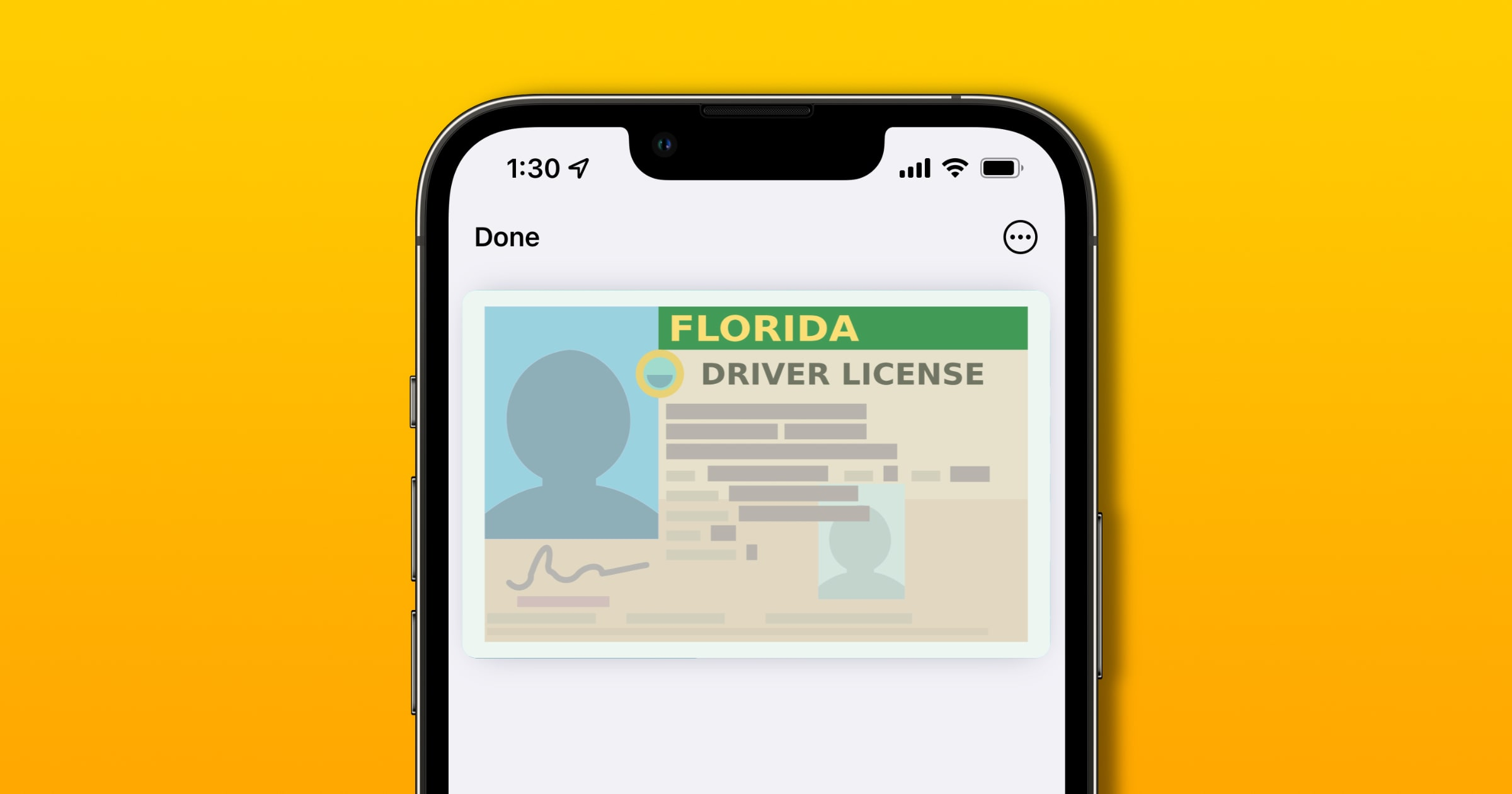 florida digital driver's license example