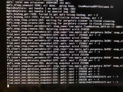 APFS error verbose